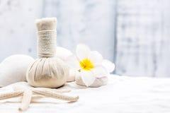 spa masaż Fotografia Stock