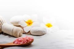 spa masaż Zdjęcie Royalty Free