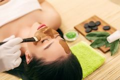 Spa Mask. Woman in Spa Salon. Face Mask. Facial Clay Mask. Royalty Free Stock Images
