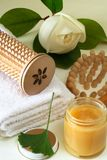 Spa massage. Some objects of relaxation and body treatment Royalty Free Stock Photography