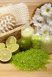Spa - massage and aromatherapy Stock Image