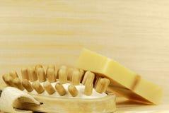 Spa massage brush Royalty Free Stock Image