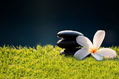 Spa massage compress balls, herbal ball and treatment  spa. Thailand, select focus Stock Image