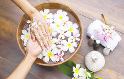 Spa massage compress balls, herbal ball on the wooden with tream. Ents spa , Thailand, soft and select focus Stock Image