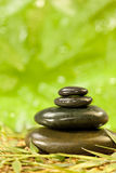 Spa Massage Hot Stones in Green Environment Royalty Free Stock Photo
