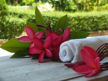 Spa massage room welcomes tourists stock images