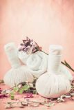 Spa massage setting with herbs and flowers on pink pale background Stock Images
