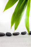 Spa massage stones with fresh bamboo leaves Stock Photos