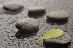 Spa massage stones. With leaves and water drops, close up Stock Image