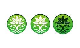 Spa Massage Yoga Health Set. Vector Royalty Free Stock Photos