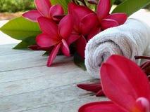 Spa massagerum v?lkomnar turister arkivfoton