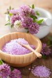 Spa med purpurfärgat växt- saltar, och växt av släktet Trifolium blommar Arkivbild