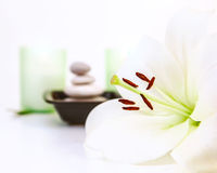 Spa and meditation Stock Photos