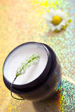 Spa moisturising product & flower. Concept of organic cosmetics, beauty product with flower Stock Photos