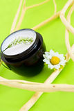Spa moisturising product with flower and branches. Concept of organic cosmetics, beauty product with flower and branches Stock Images