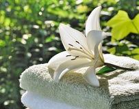 Spa in morning garden Royalty Free Stock Photo
