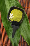 Spa mud, brush, flower and green leaf Stock Photography