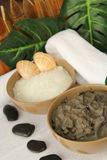 Spa with mud and marine salt. Two clay pots with mud and marine salt Stock Image