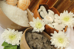 Spa with the mud and the salt. Spa with the salt, mud, rocks and flowers Royalty Free Stock Image