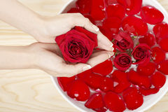 Spa Natural Manicure with Red Roses Wood Background Royalty Free Stock Photography