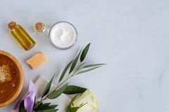 Spa natural skin care products background with space, cosmetic products - cream, oil and honey creative layout stock photos