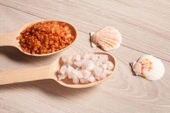 Spa naturprodukter Träskedar med det salta bruna och vita havet Royaltyfria Bilder