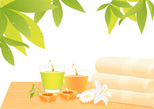 Spa object still life Royalty Free Stock Photography