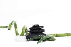 Spa objects. Sliced aloe leaves and bamboo on the stone isolated on white background Royalty Free Stock Photo
