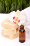 Spa objects. With soap, towel and oils Royalty Free Stock Images