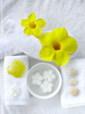 Spa objects. With tropical flowers and leaves Stock Photo