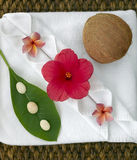 Spa objects. With tropica flowers on natural texture Stock Photos