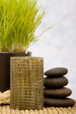 Spa objects and aromatherapy candle Stock Photos
