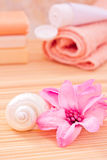 Daily spa objects, towel, soaps, lotion, flower Stock Photography