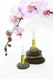SPA oil ampules. Stones, oil and perfumeв serum in ampules with tender orchids Stock Images