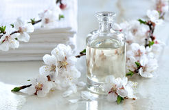 Spa oil. Spa massage oil decorated with spring blooming branches, special formula of essencial oils; exclusive and luxury product Royalty Free Stock Photo