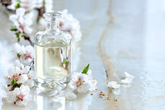 Spa oil. Spa massage oil decorated with spring blooming branches, special formula of essencial oils; exclusive and luxury product Royalty Free Stock Images
