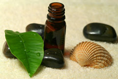 Spa with oil and shell Royalty Free Stock Photography