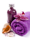 Spa (orchid, towels, sea salt, candle, and shells) Royalty Free Stock Image