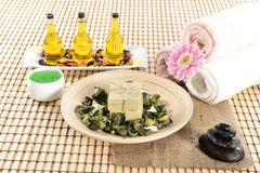 Spa organic soap and massage oil Royalty Free Stock Photos