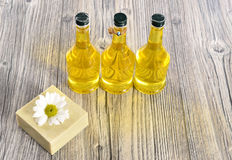 Spa organic soap and oil Royalty Free Stock Images