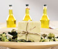 Spa organic soap and oil Stock Photography