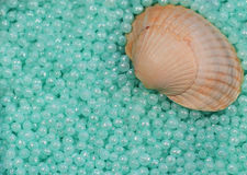 Spa pearls and shell. Blue pearls  for bath and shell Stock Images