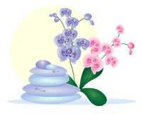 Spa pebbles with orchids Stock Image