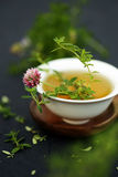 Spa with pink clover flowers and thyme herbal tea isolated on dark background Stock Photos