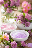 Spa with pink herbal salt and wild rose flowers clover Royalty Free Stock Images