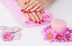 Spa pink manicure Stock Images