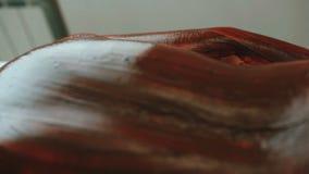 SPA- procedure De masseur maakt chocolade die jonge vrouw verpakken stock footage