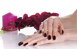 Spa procedures with orchid and aroma candle Stock Image