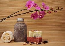 Spa products. The orchid with spa products Royalty Free Stock Photography