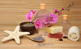 Spa products. The orchid with spa products Stock Photos
